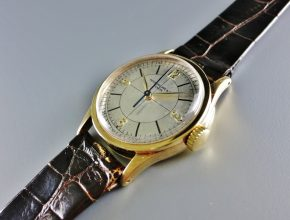 ref.96 yellow with two tone sector dial